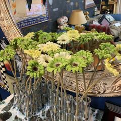 四月の花器/ツェツェ/インテリア/イケア/住まい/小さい春 春っぽく。ガーベラを飾ってみました。 ……