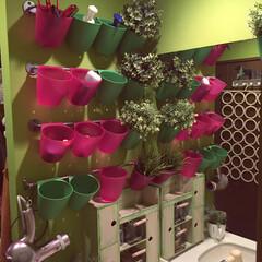 壁面収納DIY/セルフペイントの壁/DIY/インテリア/イケア/住まい/... 洗面所に壁面収納をDIYしました。 イケ…