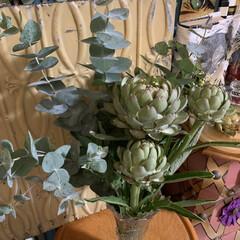 ユーカリ/アーティチョーク/花のある暮らし/伊都菜彩/暮らし 直売所で購入した生のアーティチョークとユ…