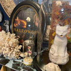 アートのある暮らし/アンティーク/ハロウィン/雑貨/住まい/暮らし/... マーサ・スチュワートのハロウィン本をナポ…