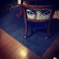 椅子の張り替え/コスガの椅子/フォロー大歓迎/インテリア/家具/住まい/... わたしのお気に入りの椅子は張り替えてもら…