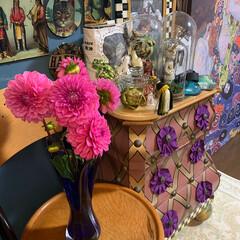 花のある暮らし/ダリア/暮らし/リビングあるある 今年は良くお花を買っています。お篭りライ…