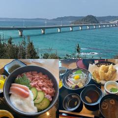 角島ランチ/角島大橋/家族旅行/お正月2020/おでかけ 正月の家族旅行。角島で食べたランチ。 や…