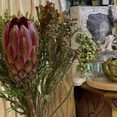 プロテア/こんな時こそお花を飾って/花のある暮らし/雑貨/暮らし/リビングあるある こんな時こそお花を飾って。 花のある暮ら…