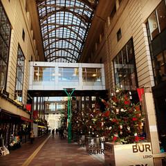 クリスマスツリー/博多大丸エルガーラ/おでかけ 年に一度の人間ドッグの帰りに大丸へ。もう…