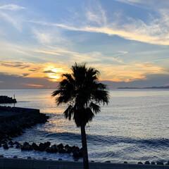 家族旅行/LIMIAおでかけ部/おでかけ/旅行/ブルー 天草下田温泉♨️望洋閣からの夕陽。