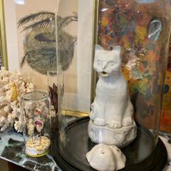 香炉/蚤の市/ブロカント/アンティーク/ガラスドーム/雨季ウキフォト投稿キャンペーン/... 大切な物はガラスドームへ。😊☝🏻💕 珊瑚…