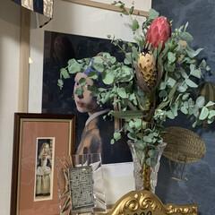 プロテアレディパール/ユーカリ/プロテアビーナス/プロテア/花のある暮らし/玄関あるある/... 昨日、久山植木で買ったプロテアビーナスと…