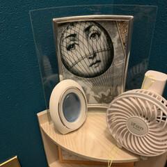 フレーム/100均/DIY/収納/住まい/暮らし/... 旦那がDIYしたトイレの棚に飾っているフ…