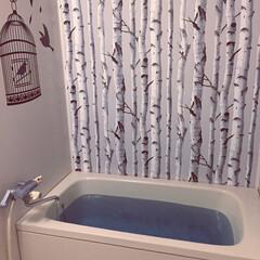 壁紙屋本舗/ウォールステッカー/うちのお風呂/LIMIAインテリア部/暮らし/住まい/... うちのお風呂。築20年近いマンションのユ…