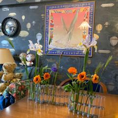 花のある暮らし/アートのある暮らし/アート/セルフペイントの壁/花瓶/LIMIAインテリア部/... スーパーで買ったお花を飾ってみました。 …