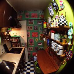 無印良品/スパイスラックDIY/ナタリーレテ/壁紙貼り/セルフペイントの壁/壁紙DIY/... わが家のコックピットキッチン。狭いキッチ…