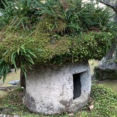 灯籠/指月公園/萩城跡/家族旅行忘備録/お正月2020/おでかけ おはようございます。😊 正月の家族旅行の…