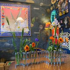 花のある暮らし/アートのある暮らし/アート/セルフペイントの壁/花瓶/LIMIAインテリア部/... スーパーで買ったお花を飾ってみました。 …(2枚目)