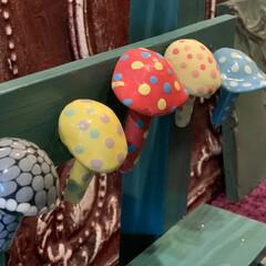 DIY/萩焼/萩土産/山口県/金子司/家族旅行/... 家族旅行の記念に購入した萩焼の金子司さん…