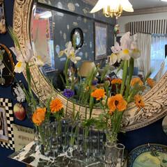 花瓶/セルフペイントの壁/アート/アートのある暮らし/LIMIAインテリア部/雑貨/... スーパーで買ったお花を飾ってみました。🌺💕