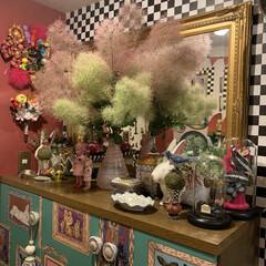 花のある暮らし/久山植木/もふもふ/スモークツリー/玄関あるある/雑貨 昨日、久山植木で買ったスモークツリー。も…