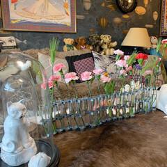 花器/テシード/Cole and Son/輸入壁紙/Re壁/ウォールデコレーション/... おはようございます。😊 花のある暮らしに…