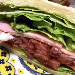 フード 断面に萌え #サンドイッチ
