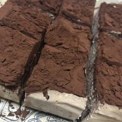 手作りケーキ チョコレートチーズケーキ