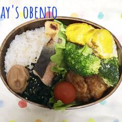 雑穀米弁当/体質改善?/お昼ご飯/節約生活/雑穀米/曲げわっぱのお弁当/... おはようございます。 行ってきます😊