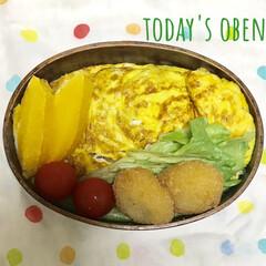 オムライス弁当/曲げわっぱのお弁当/雑穀米/節約生活/お昼ご飯/雑穀米弁当/... おはようございます。 初の雑穀米オムライ…
