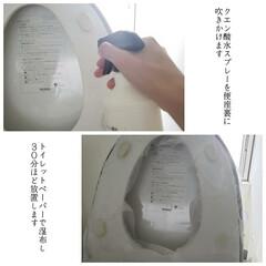 トイレスティック/ダイソー/クエン酸水スプレー/掃除/トイレ掃除/トイレの念入り掃除/... こんばんは🌃 . . 今日のこそうじは、…(2枚目)
