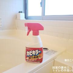 ハイホーム/トイレの手洗い器の掃除/洗面台の掃除/浴室の排水口の掃除/毎日こそうじ/こそうじ/... こんばんは😃🌃 . . 今日のこそうじは…