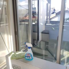 そうじの神様 窓・網戸用おそうじクロス 小(ガラスワイパー、スクイジー)を使ったクチコミ「こんばんは😃🌃 . . 今日のこそうじは…」
