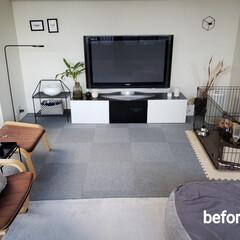 リビングルーム/リビング模様替え/インテリア/家具/無印良品/イケア/... リビングを少しだけ模様替えしました‼️ …