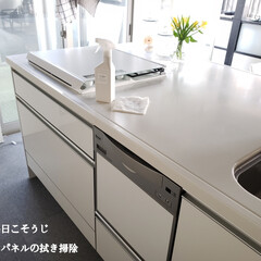 2階キッチン/アイランドキッチン/アルカリ電解水/キッチンパネルの拭き掃除/拭き掃除/毎日こそうじ/... こんばんは😃🌃 . . 今日のこそうじは…