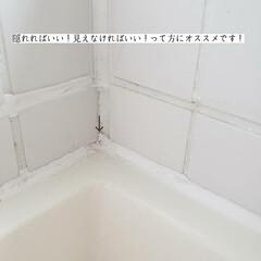 浴室/掃除/supported/リベルタ/防カビリカバリーマジック/カビダッシュ/... こんばんは🌃 . . 今日のこそうじは、…(6枚目)