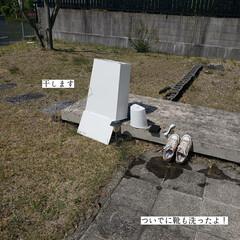ウタマロクリーナー/草取り/ゴミ箱の掃除/毎日こそうじ/こそうじ こんばんは🌃 . . 今日のこそうじは、…(3枚目)
