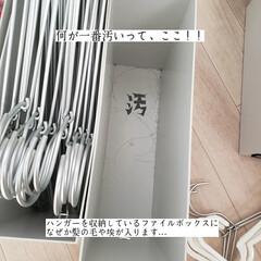 無印良品/フローリング用おそうじクロス/そうじの神様/アルカリ電解水/拭き掃除/洗濯機の棚の拭き掃除/... こんばんは🌃 . . 今日のこそうじは、…(5枚目)