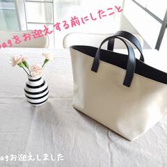 LINE査定/オーシバル/バッグ購入/暮らし 先日、悩みに悩んで…。 おニューなバッグ…