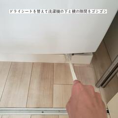 掃除/簡単こそうじ/ダイソー/隙間らくらくハンディーワイパー/冷蔵庫と洗濯機の隙間掃除/隙間掃除/... こんばんは🌃 . . 今日のこそうじは、…(7枚目)