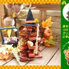 DIY/ハロウィン/ハロウィンツリー/クリスマス/クリスマスツリー/自然素材/...