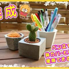 DIY/簡単DIY/DIY材料/セメント/工作/夏休み工作/...