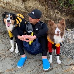 海/愛犬/ボーダーコリー/わんこ/犬/雨季ウキフォト投稿キャンペーン/... 昨日は、海🏖に行って いっぱい遊んで来た…