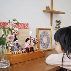 雑貨/インテリア雑貨/季節雑貨/雛人形/ふらここ/お祝い/... (1枚目)