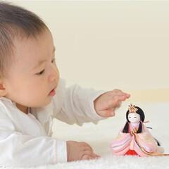 ひな祭り/ひなまつり/お雛様/雛人形/桃の節句/雛祭り/... 赤ちゃんとお雛様の出会い☺️♡  そーっ…(1枚目)
