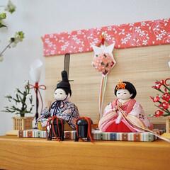ひな祭り/ひなまつり/お雛様/雛人形/桃の節句/雛祭り/... 可愛らしさだけでなく、どこか凛とした雰囲…(1枚目)