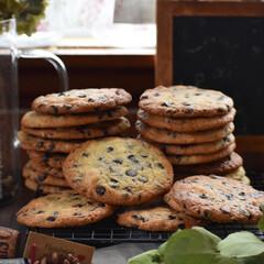 お菓子作り/おうちカフェ/手作りスイーツ/手作りお菓子 チョコチップクッキー。(2枚目)