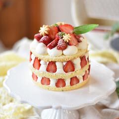 手作りケーキ/手作りおやつ/手作りスイーツ/手作りお菓子 今日のおやつ。 小粒いちごちゃん消費に小…(2枚目)