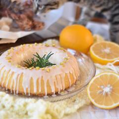 手作りケーキ/手作りおやつ/手作りお菓子/手作りスイーツ 今日のおやつ。 ウィークエンドシトロン🍋(4枚目)