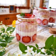 手作りおやつ/手作りお菓子/手作りスイーツ/手作りケーキ/春/おやつタイム/... 今日のおやつ。 いちごミルクプリン。 下…(2枚目)