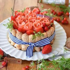 手作りケーキ/手作りスイーツ/手作りお菓子/手作りおやつ/おうちカフェ 少し早い母の日に義母へシャルロットケーキ…(1枚目)