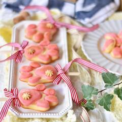 手作りスイーツ/手作りお菓子/手作りおやつ/手作りケーキ やってみたかった肉球ケーキ🐾 (2枚目)