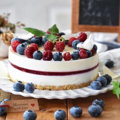 お菓子作り/手作りケーキ/手作りスイーツ/おうちカフェ カルピスレアチーズケーキ。(2枚目)