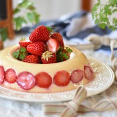 おうちカフェ/お菓子作り/手作りお菓子 乳製品を買おう!! ってなわけでプリン。…